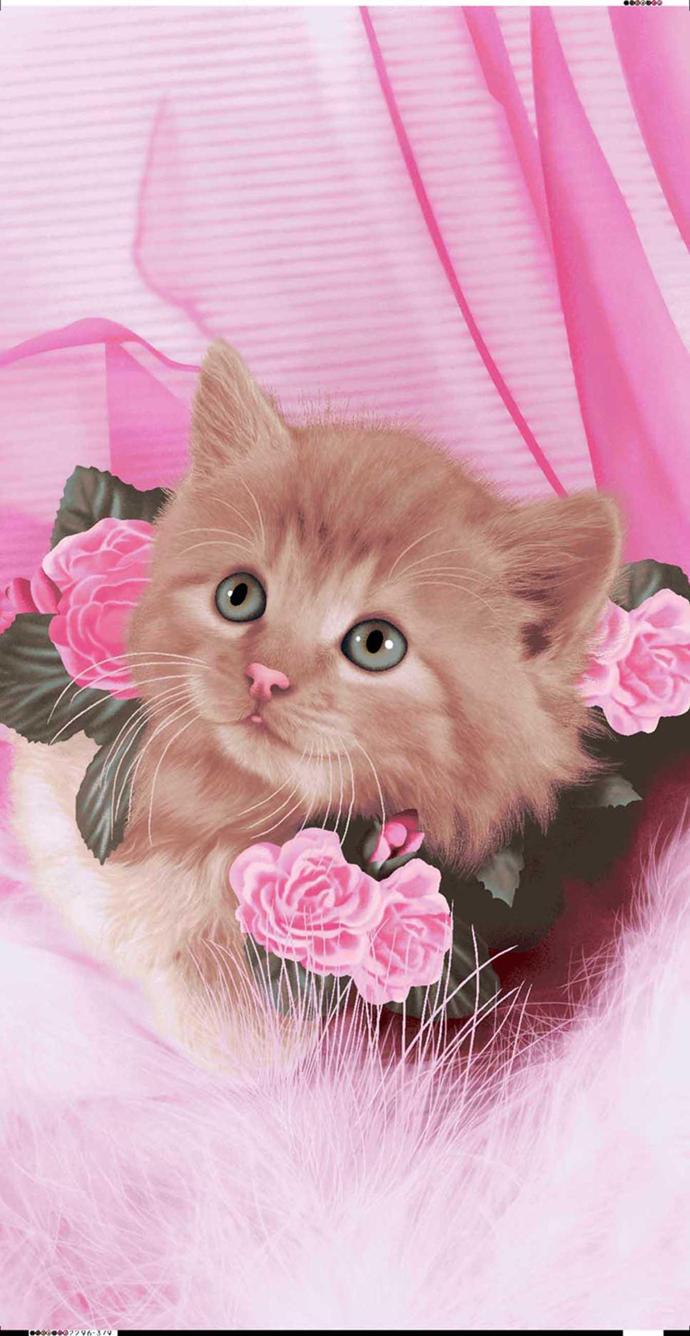 KITTY CUTE ROSE CAT 2296