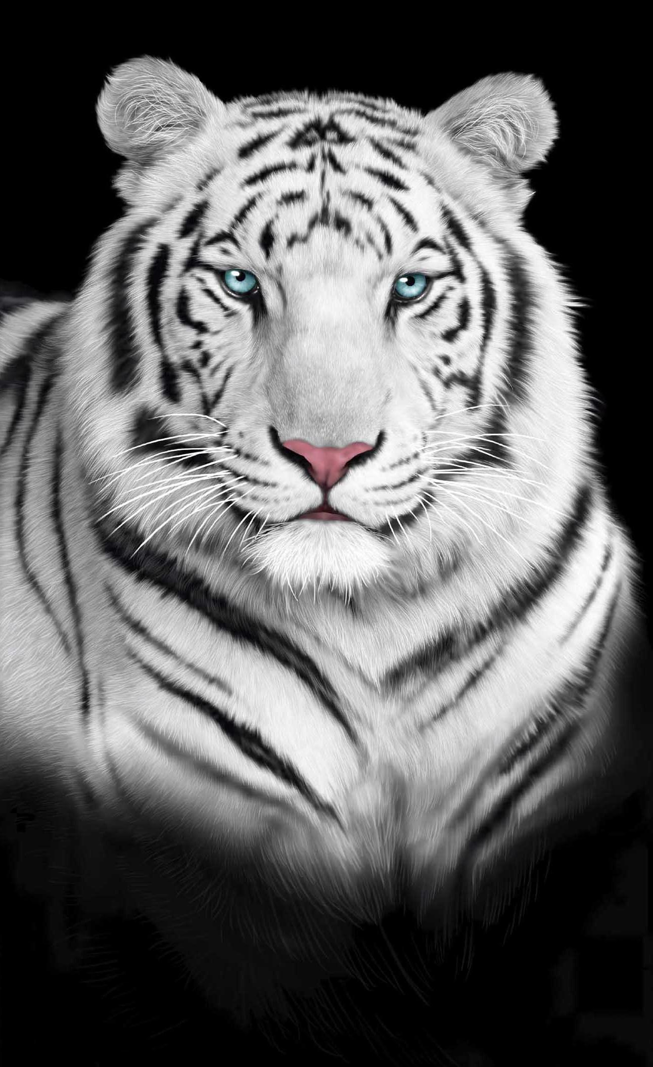 WHITE BENGAL TIGER TOWEL